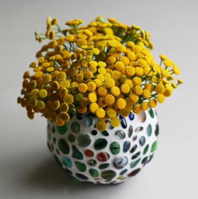 Ароматная желтая пижма: как собирать и сушить цветы