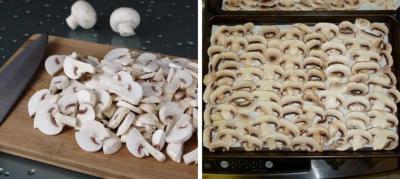 Не ядовитые грибы: как правильно сушить шампиньоны