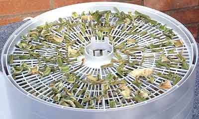 Овощи на зиму – это просто: как сушить сельдерей
